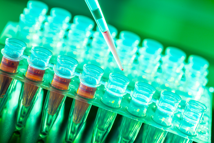 New research hugely widens the possibilities for stem cells