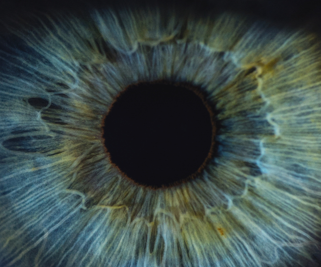 UK biotech company report the development of potential new stem cell cure for blindness